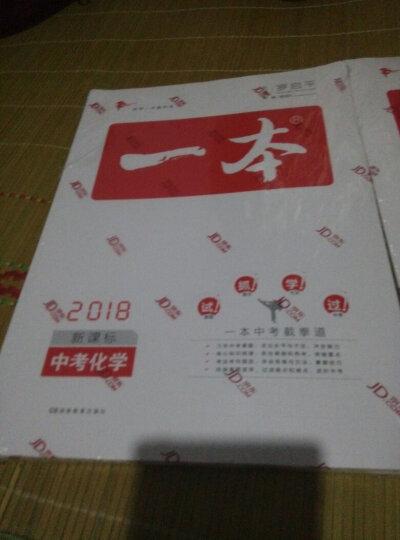 2018年一本 中考语文(新课标板 初中学生总复习) 开心教育 晒单图