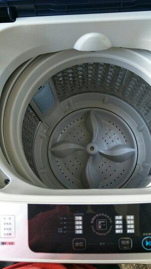 TCL 8公斤 全自动波轮洗衣机 金属机身(深海蓝) XQB80-1578NS 晒单图
