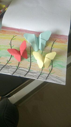 乐哲 儿童折纸剪纸书大全套装3-6岁宝宝diy手工材料包彩色纸折纸书幼儿园益智玩具 240张礼盒装+两把剪刀 晒单图