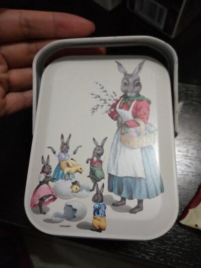 TCTC 芒果味爆浆曲奇朵朵兔子手提铁礼盒102克西式夹心饼干办公室休闲零食品烘焙糕点心女友儿童送礼铁罐包装 晒单图