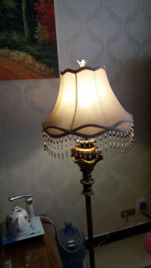 wanlang 欧式落地灯 复古灯饰客厅装饰卧室落地灯具 CK5607GL 晒单图