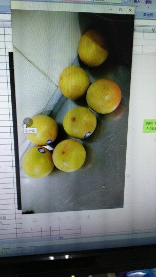 南非红心西柚 葡萄柚 西柚  进口红西柚 生鲜水果   晒单图