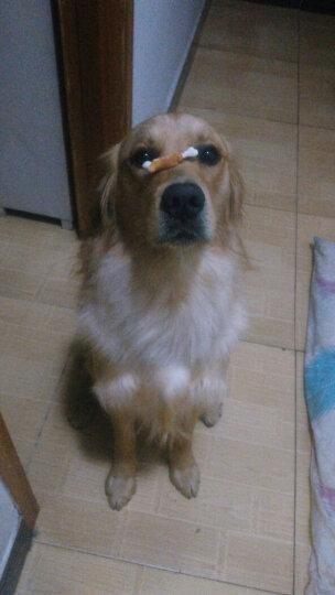 嘟嘟贝狗狗零食宠物磨牙棒泰迪咬胶钙奶棒 鸡肉卷甘薯100g 晒单图