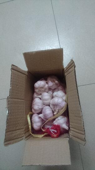 【汶上馆】新鲜金乡大蒜头 山东特产紫皮鲜蒜 紫皮干蒜 2.5kg 晒单图