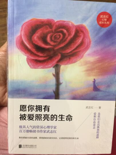 武志红心智成长系列:愿你拥有被爱照亮的生命 晒单图