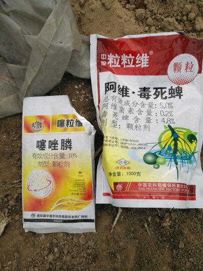 中保 噻唑膦10% 各类作物通用针对抗性根结线虫病农药 500克*4袋 晒单图