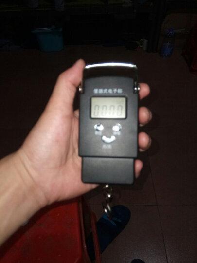 龙蓓便携式手提秤 手提称电子称50kg 厨房秤 手提电子秤迷你快递称精准弹簧秤 升级款 手提秤 晒单图
