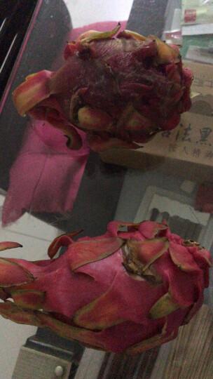 【第2件5折】越南进口红心火龙果 3个 单果约350g 新鲜水果 红肉 晒单图