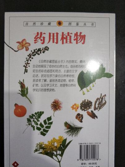 药用植物:全世界700多种药用植物的彩色图鉴 晒单图