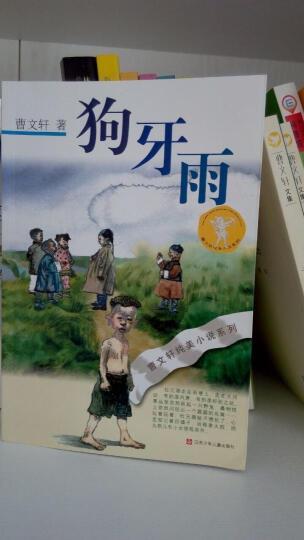 曹文轩纯美小说系列:狗牙雨 晒单图