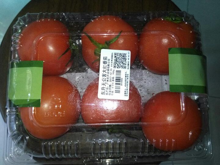 东升农场 大红番茄 西红柿 约900g 新鲜蔬菜 晒单图