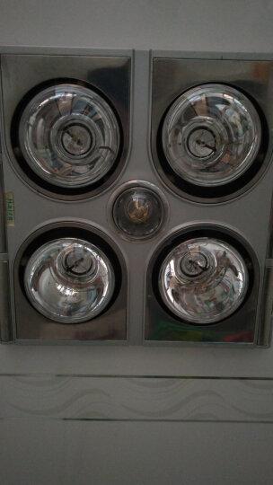 飞利浦灯暖浴霸 暖阳型红外线取暖灯 浴室卫生间透明灯暖浴霸灯泡245W 245W 晒单图