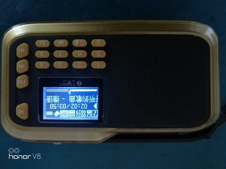 不见不散(See me here) LV390 插卡收音机老人随身听 老年便携式mp3播放器迷你小音箱  水晶红 晒单图