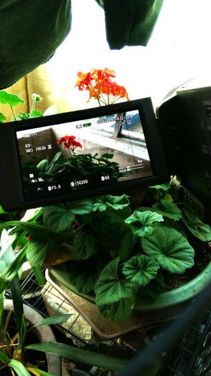 索尼(SONY)高清数码摄像机 FDR-AX700 超清4K新品 套餐二 晒单图