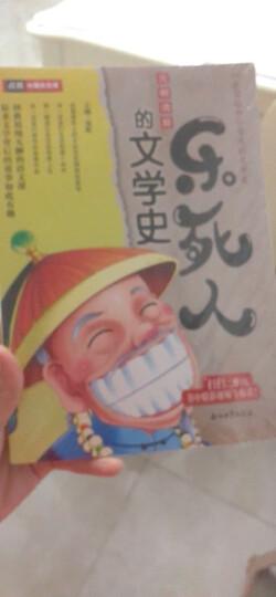 乐死人的文学史·元明清篇 晒单图