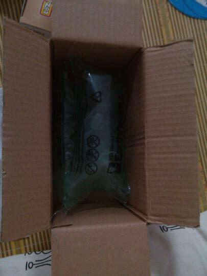 LOZ 俐智拼插玩具龙猫肖恩足球小子动漫卡通公仔我的世界3D立体拼插积木玩具礼品生日礼物 9446 杰瑞鼠 晒单图
