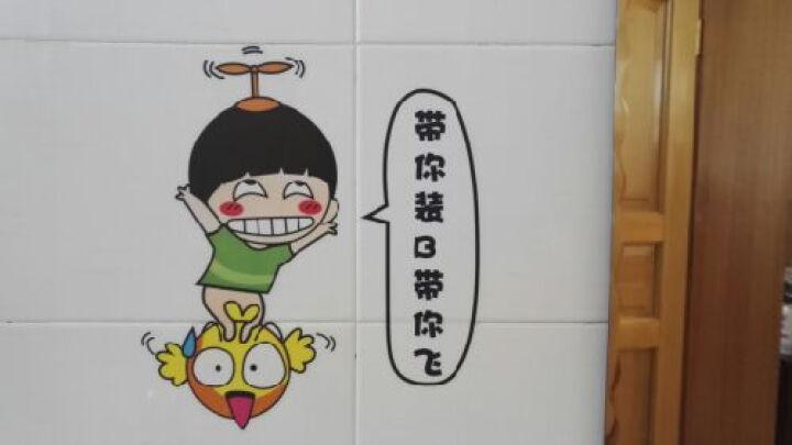 凡雅空间 可移除墙贴画办公室创意搞笑宿舍浴室卫生间玻璃瓷砖贴纸墙壁装饰 02.胖子没钱途 小号 晒单图