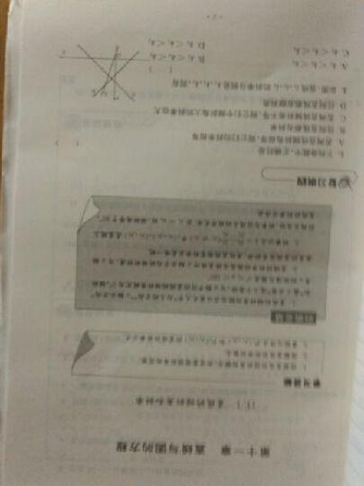 数学学习与评价:2年级(下册) 晒单图