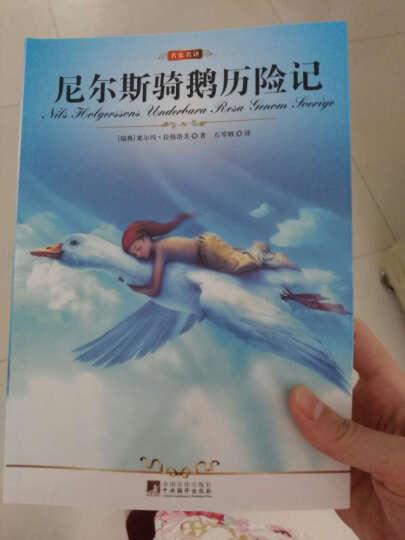 小学生课外阅读经典:中国神话故事(彩绘注音版) 晒单图