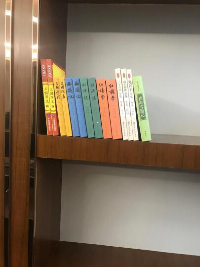 中译经典文库·世界文学名著2:雾都孤儿(英语原著版) 晒单图
