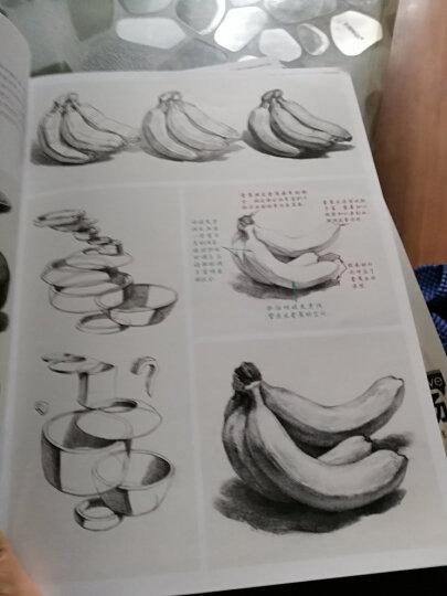 经典全集素描静物铅笔美术绘画书籍杨建飞联考线描技法结构诀窍照片临摹临本从自学到精通画画初学 晒单图