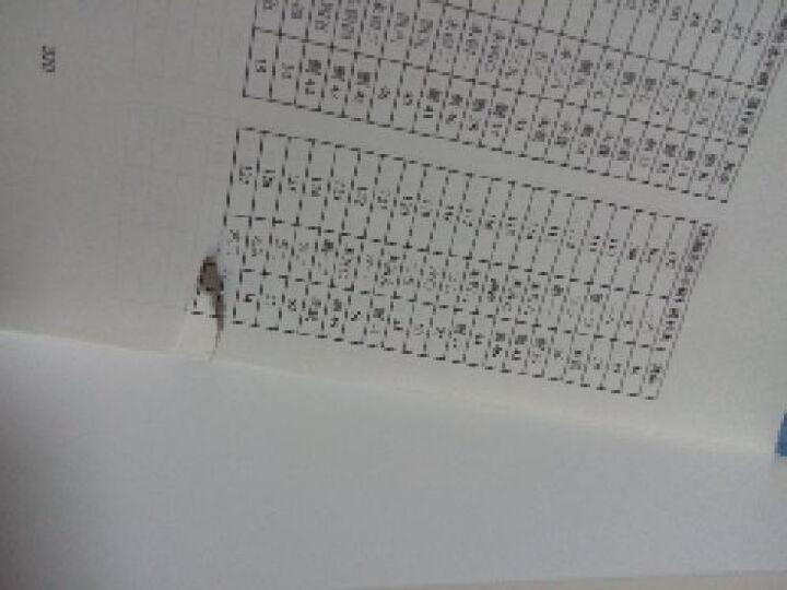 王氏馆藏手稿全本在线美图·趣译·悦读经典:人间词话(手稿全本 精美插图本) 晒单图
