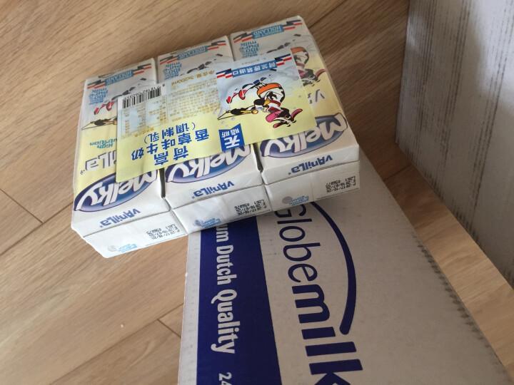 荷兰原装进口 荷高(Globemilk)香草味牛奶(调制乳)200ml*24整箱装 晒单图
