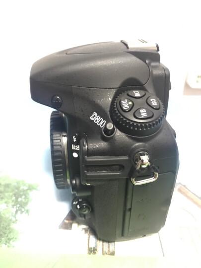尼康(Nikon)D600  D800  D800E  D4  D4S  样机处理 D800样机处理 单机身(不含镜头) 晒单图