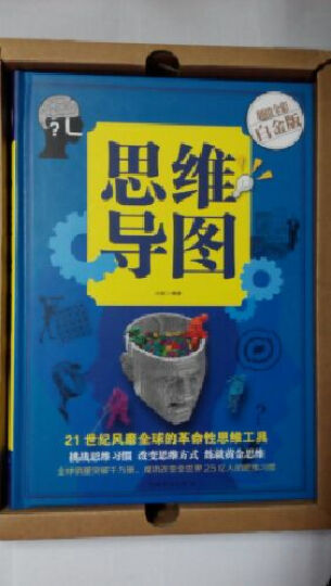思维导图(彩图精装) 逻辑思维导图系列 策略思维操作书 创新思维 操作训练智慧书籍畅销书 晒单图