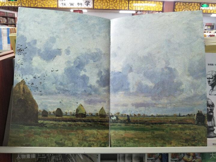 西方绘画大师:毕沙罗 晒单图