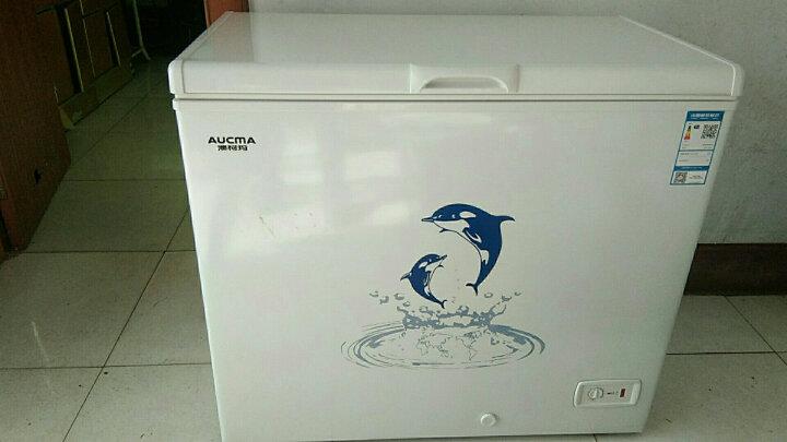 澳柯玛(AUCMA)208升冷藏冷冻转换变温冷柜 冰柜 BC/BD-208HNE 晒单图