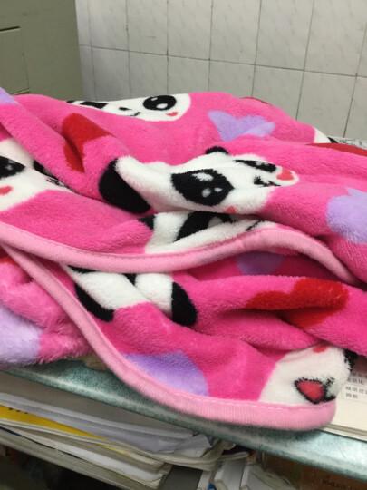 娜豆毛绒玩具熊猫抱枕大眼熊猫暖手抱枕暖手捂暖手宝午睡枕 桃心可爱 小号三合一毯(暖手+1米毯子)送眼罩 晒单图