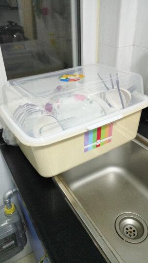 沃德百惠(WORTHBUY) 沃德百惠碗架沥水架厨房置物架碗筷收纳盒碗碟架收纳柜碗架 翻盖紫色小号 晒单图