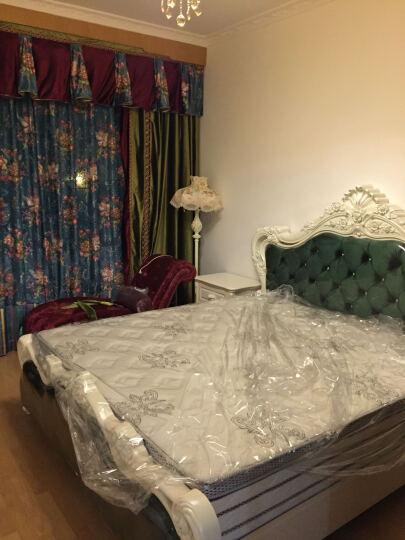 wanlang 客厅卧室床头灯 简约公主田园创意欧式 落地灯 5666L绣花 晒单图