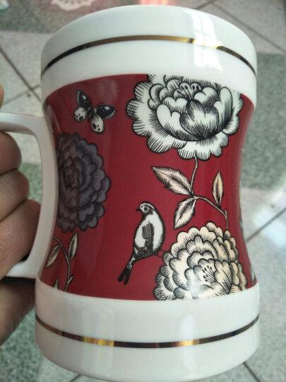 陶园梦 骨瓷茶杯带茶隔 过滤水杯马克杯带盖容量500ml 英国风情 晒单图