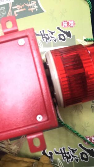 杭亚 YS-01H工业语音声光报警器一体化大分贝喇叭高级电子蜂鸣器起重机行车厂房室外报警器喇叭 AC220V 晒单图