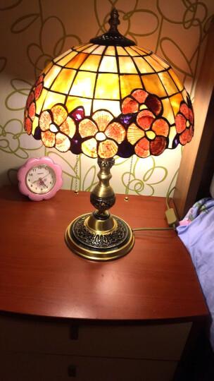 纯铜!地中海欧式蒂凡尼TIFFANY台灯纯手工贝壳富贵花台灯全铜创意书房钢琴室装饰灯 小号富贵花-直径30cm 晒单图
