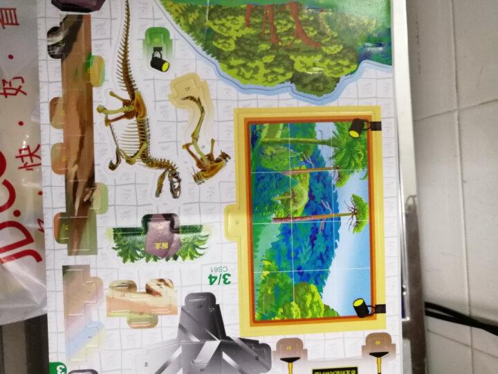恐龙世界立体大拼插:恐龙博物馆 晒单图
