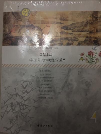 2014中国年度中篇小说(套装共2册) 晒单图