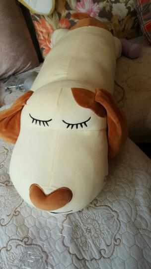 贝缘 毛绒玩具狗趴趴狗抱枕布娃娃可爱公仔女朋友节日礼物 棕色狗 80厘米 晒单图