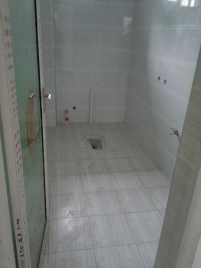 【特】万美瓷砖 木化石 厨房卫生间瓷砖墙砖防滑不透水地砖釉面砖 WP7031单片价格,下单需整箱,每箱8片 300*600mm 晒单图