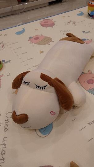 贝缘 毛绒玩具狗趴趴狗抱枕布娃娃可爱公仔女朋友节日礼物 米黄色狗 80厘米 晒单图