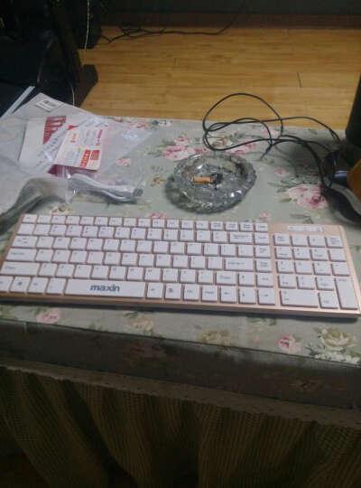 maxin M3 无线键盘鼠标套装 时尚笔记本巧克力