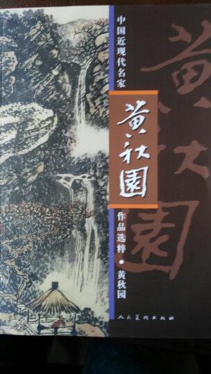 中国近现代名家作品选粹:黄秋园 晒单图