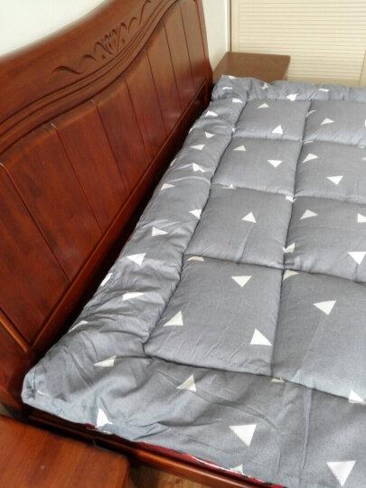 南极人 加厚床褥单双人学生宿舍榻榻米羽丝绒床垫子垫被 纯色系列-白色 150cm*200cm 晒单图