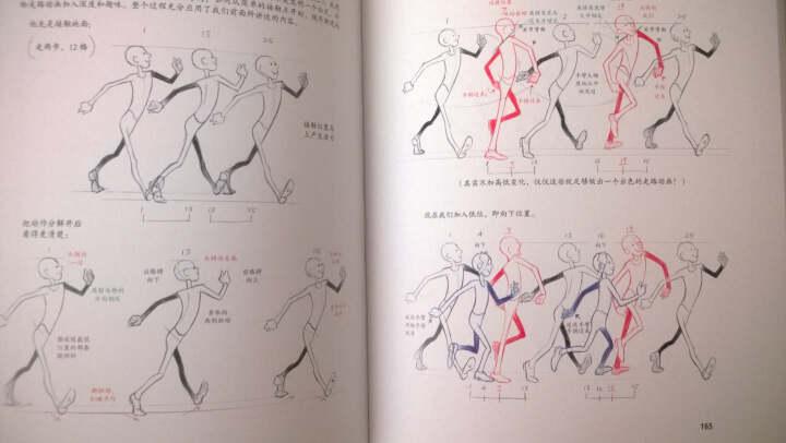 原动画基础教程:动画人的生存手册 晒单图