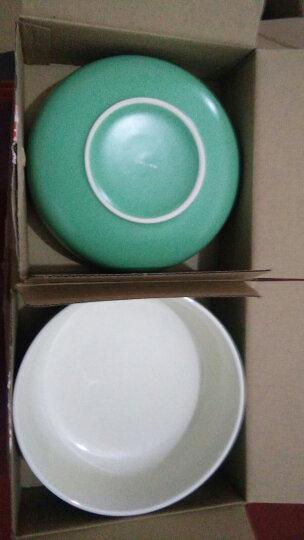 剑林 创意日韩欧式陶瓷器餐具小汤碗大米饭碗6英寸面碗家用碗甜品碗 北欧印象 绿色 晒单图