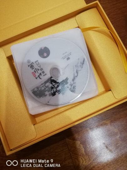 大师教你中国山水画技法(5DVD+CD) 晒单图