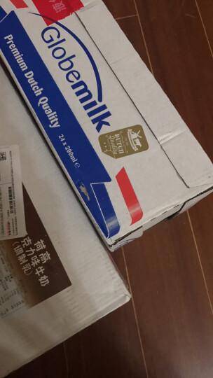 荷兰原装进口 荷高(Globemilk)巧克力味牛奶(调制乳)200ml*24整箱装 晒单图