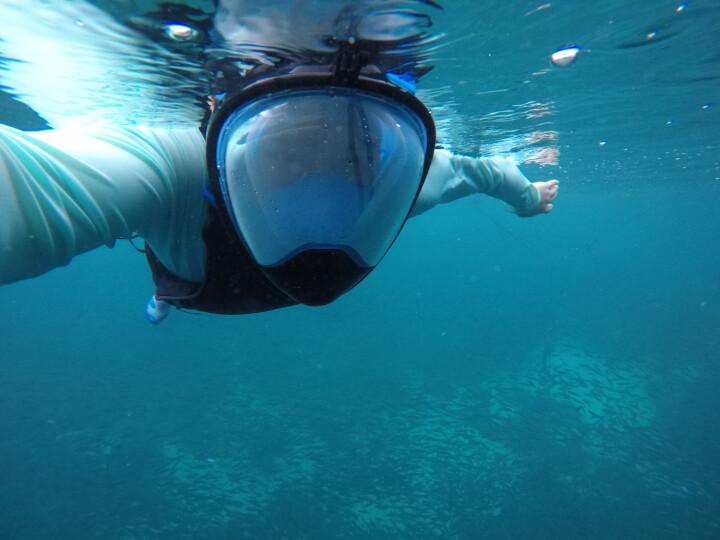 THENICE 潜水镜潜水面罩潜水装备浮潜三宝防雾近视全干式呼吸管儿童成人游泳防呛水 近视款粉色S/M 晒单图
